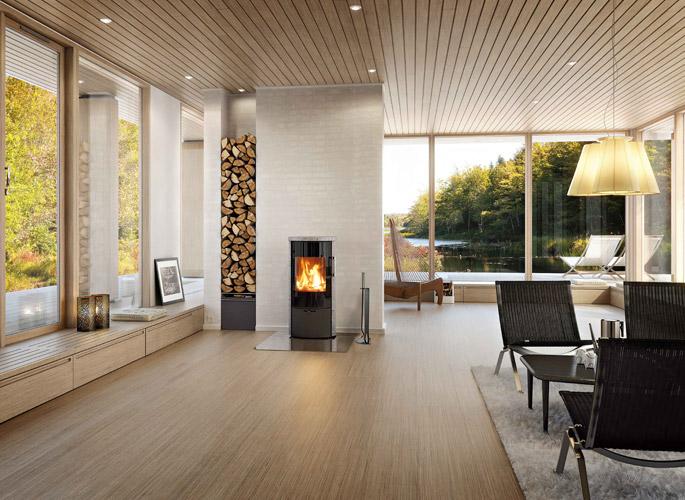 brenn kamin fen. Black Bedroom Furniture Sets. Home Design Ideas